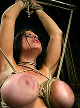 Big Tits Fetish, Daphne's huge 36G breasts get tighly bound.