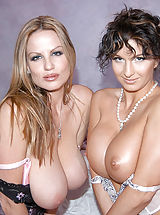 Bouncing Boobs, What happens when you get two horny brunettes in lace on a bed together? This is what happens! Cynthia Pendragon and I got all nasty together. Her big titties and round ass got my blood flowing and my tongue wagging. I was wagging that tongue on her...