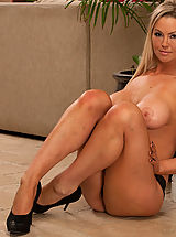 Busty Housewives, Abbey Brooks