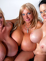 Busty Sluts, Echo Valley, Kayla Kleevage and Sofia Staks smother Charles with their colossal boobies!