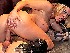 Hard Nipples, Brazzers Video Brazzers Kombat